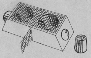 Сдвоенная клеточка Бидер-манна.