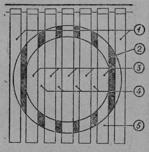 Гнездо пчел: 1 — крайние рамки, 2 — в улочках около расплода пчелы сомкнуты в виде кольца, 3 — рамки с расплодом. 4 — улочки между рамками. 5 — периферийная область без пчел.