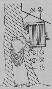 Прикрепление ящика к дереву для извлечения пчелиной семьи, поселившейся в его полом стволе: 1 — дерево, 2 — пчелиная семья в полом стволе, 3 — ящик, прикрепленный к отверстию в дереве, 4 — рамки в ящике, 5 — замазанные глиной отверстия около ящика, 6 — навес под ящиком.